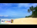 Lambug Beach in Badian Cebu Virutal Walk Philippines Travel Guide 4K 🇵🇭