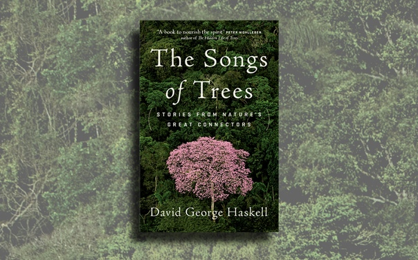 The Songs of Trees - David George Haskell