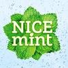 Nice mint