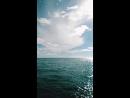 🌊💜 А море море помнит все наизусть 1080p