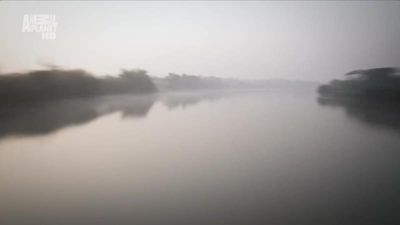 В дебрях Индии Фильм 2 Ганг Река жизни 2011г