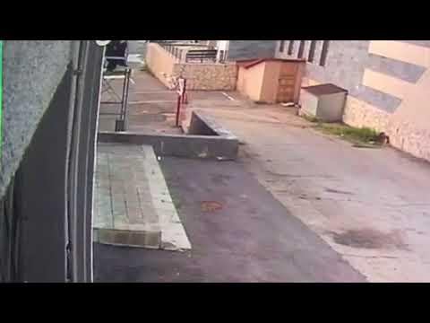 Побег по лестнице воровки с собачкой из гостницы в Саратове смотреть онлайн без регистрации