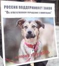 Личный фотоальбом Olga Ivanova