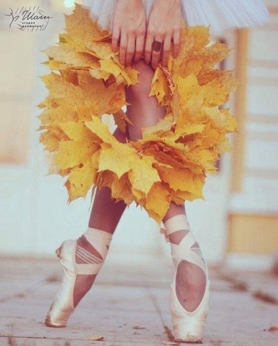 Друзья, осень 🍂🍁, это не только...