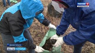 В Архангельске волонтёры благоустроили захоронение советских солдат, погибших по время Финской войны
