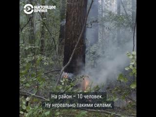 Что жители Иркутской области говорят о лесных пожарах: