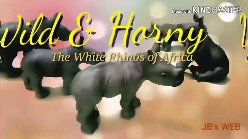 WILD HORNY : The White Rhinos 🦏 of Africa 🌍