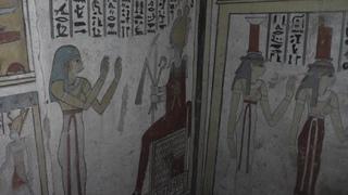 Настенные росписи и мумии животных: в Египте обнаружили гробницу эпохи Птолемеев