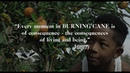 ARRAY's BURNING CANE Official Trailer Directed by Phillip Youmans