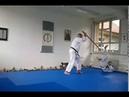 Aikido Iwama Ryu Tachi-Dori / kokyu nage