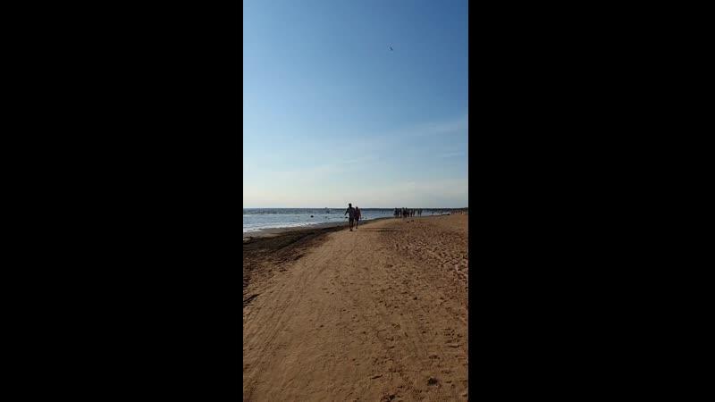 Путишествие по пляжу от Курорта до Дюн _1.mp4