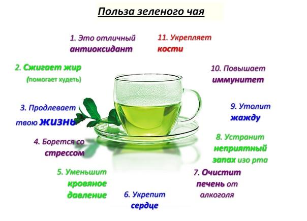 Правда Что От Зеленого Чая Можно Похудеть. Зеленый чай для похудения: правда и мифы