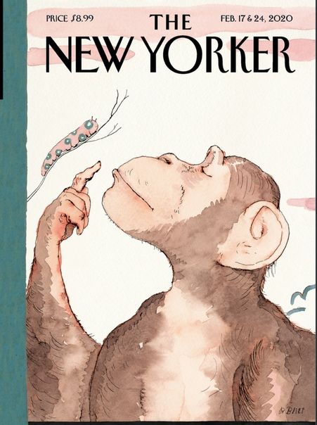 The New Yorker - February 17-24 2020