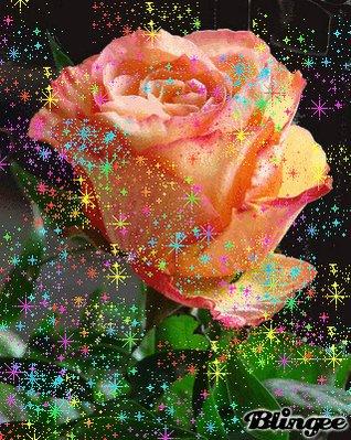 Фото блискучих роз чего
