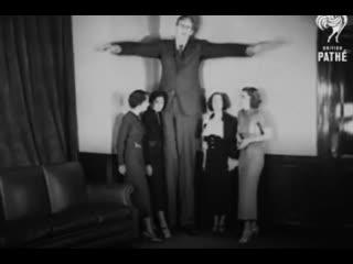 Этот парень был самым высоким человеком в истории.