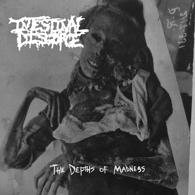 Intestinal Disgorge - The Depths of Madness [EP]