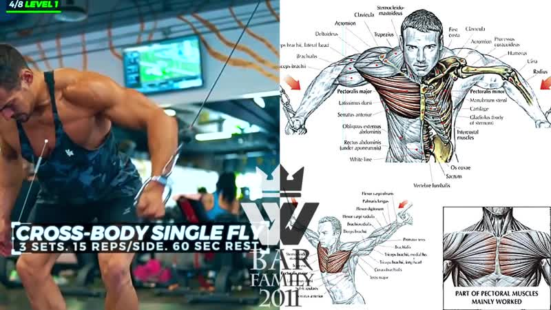 Best UPPER BODY Workout _ ARMS, SHOULDER, CHEST