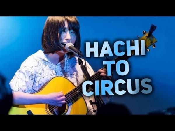 Hachi to Circus Sayuri Kanji Romaji English subbed 2015 12 03 at Shibuya WWW