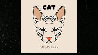 |FREE mp3 |D-Nike Production-CAT| type beat| Underground 2019