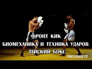 ФРОНТ КИК. БИОМЕХАНИКА И ТЕХНИКА УДАРОВ. ТАЙСКИЙ БОКС
