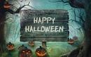 И снова наш любимый Хэллоуин! Всех с праздником! #halloween #thisishalloween #happyhalloween #nota_b