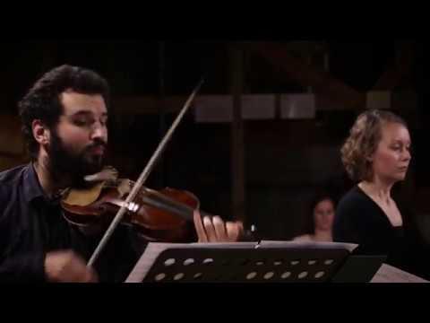 Alessandro Stradella: Sinfonia D Minor | Louis Creac'h, Teodoro Baù, Marianna Henriksson