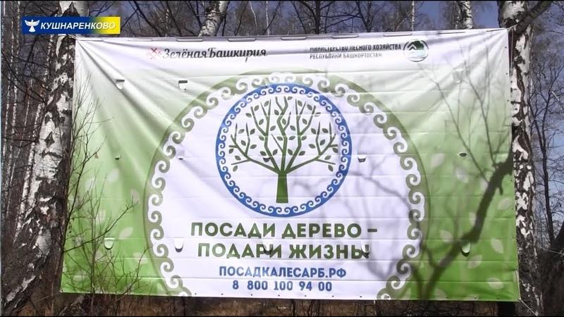 Зелёная Башкирия Посади дерево подари жизнь 27 апреля 2019 год с Султанаево