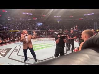 Пётр Ян - влог с UFC 245