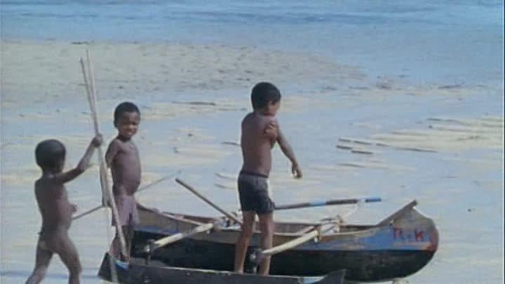 Мадагаскар - Душа острова. Часть 1. 1995. ( Одиссея Жака Кусто ).