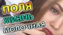 ПОЛЯ ИЗ ДЕРЕВКИ ЖИЗНЬ МОЛОЧНАЯ PolyaIzDerevki