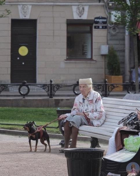 Стильными и обаятельными умеют быть не только европейские пенсионеры