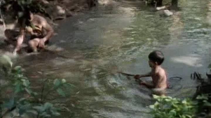 Вьетнам и Камбоджа - Дети риса и пороха. 1993. ( Одиссея Жака Кусто ).