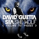 David Guetta ft. Sia – She Wolf (Falling to Pieces) - PSY – опа гангам стайл