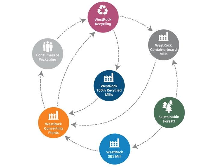 Westrock готова принять на вход мусор, переработать его и создать из вторсырья новые коробки. На балансе компании 22 производства в 10 странах, включая США, Канаду и Китай, а также Еврозону.