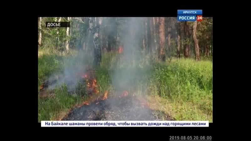 Заместитель главы МЧС России Игорь Кобзев назвал основную причину лесных пожаров в Сибири
