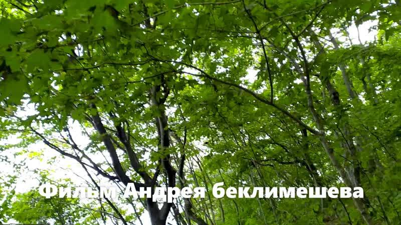 Испытание экшн камеры и аквабокса Бухта Аякс остров Русский Владивосток 08 08 2020