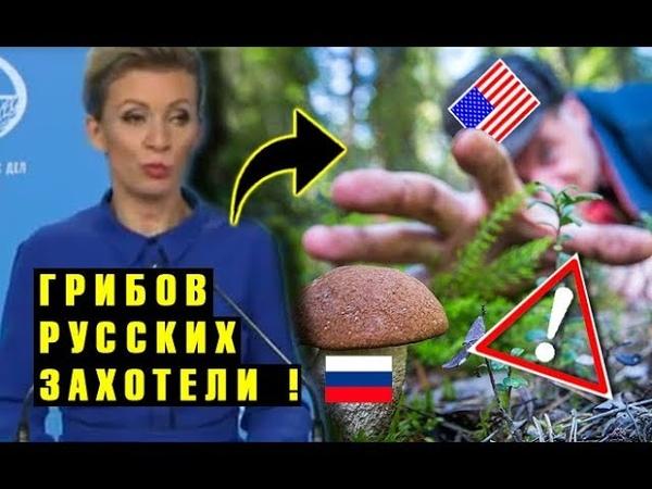 В США мох с другой стороны Разгорелся ШПИОНСКИЙ СКАНДАЛ Мария Захарова и грибники разведчики