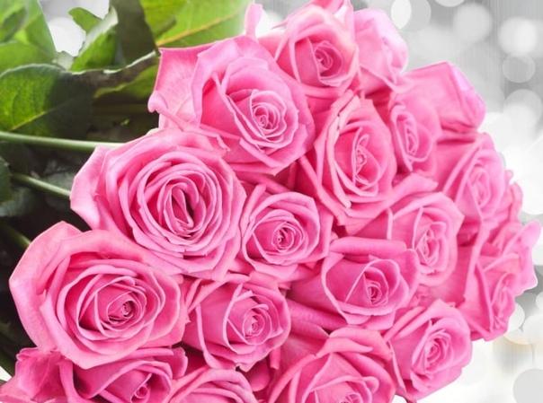 Картинки розы с днем рождения людмила