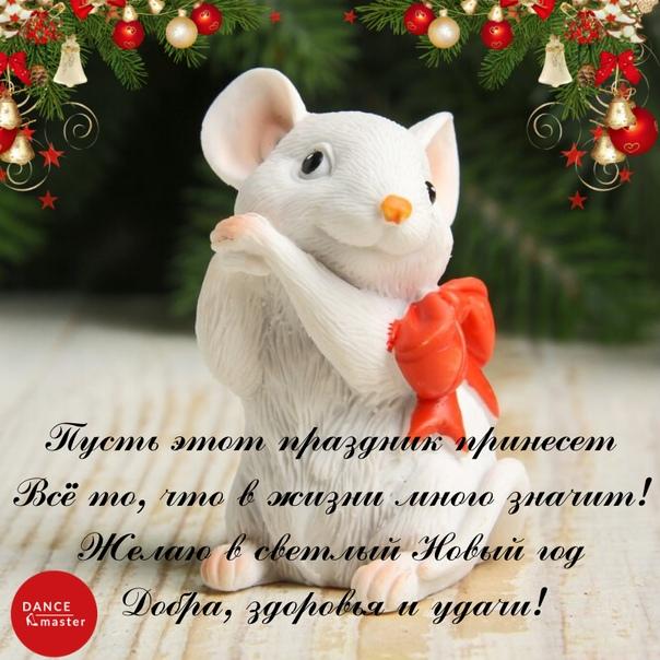 новогодний стих с поздравлениями от мышонка надгробия закрыт черной