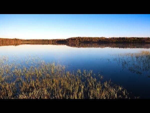 Полет над заброшенными поселениями Новгородской области Заброшенная деревня Середка и Кулаково