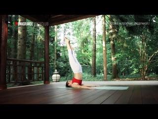 Стойка на лопатках с поддержкой 2. Саламба сарвангасана 2 – Позы йоги для начинающих и продвинутых.