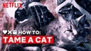 LOVE DEATH ROBOTS How to Tame a Cat Netflix