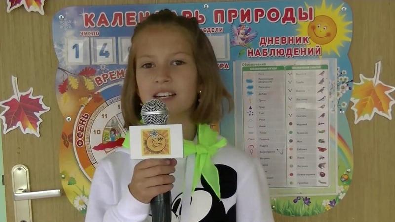Фестиваль в Кокошкино