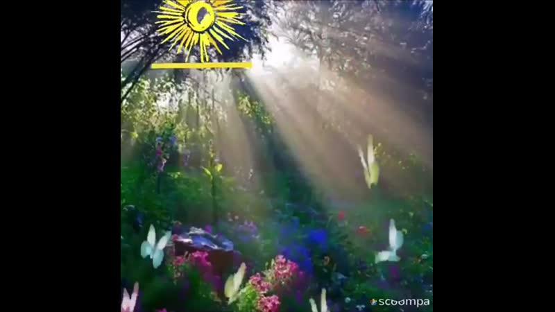 Video-181c8aba49d3d6702083260958f4226a-V.mp4
