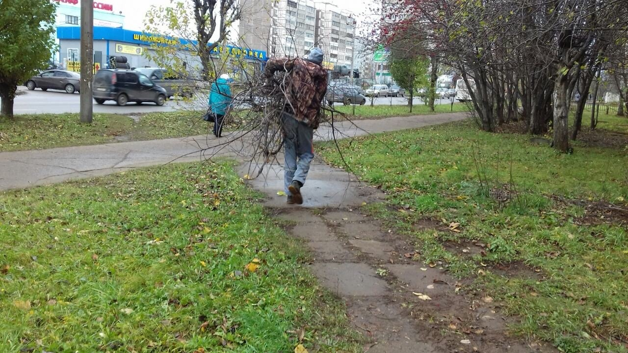 Просеки Строителей дом 46 обрезка веток деревьев