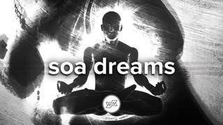 Soa Dreams - Forest Buddha Techno, Vol.4 (Soad Dreams Album mix)