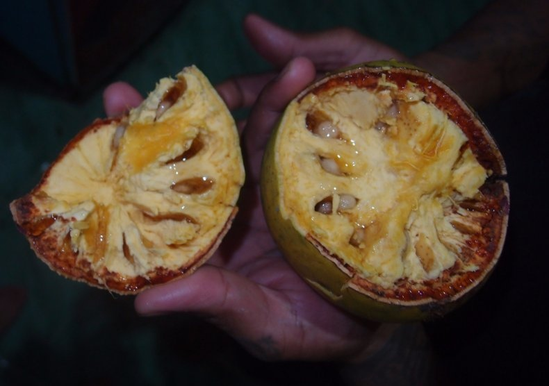 Гид по фруктам Шри-Ланки, изображение №5