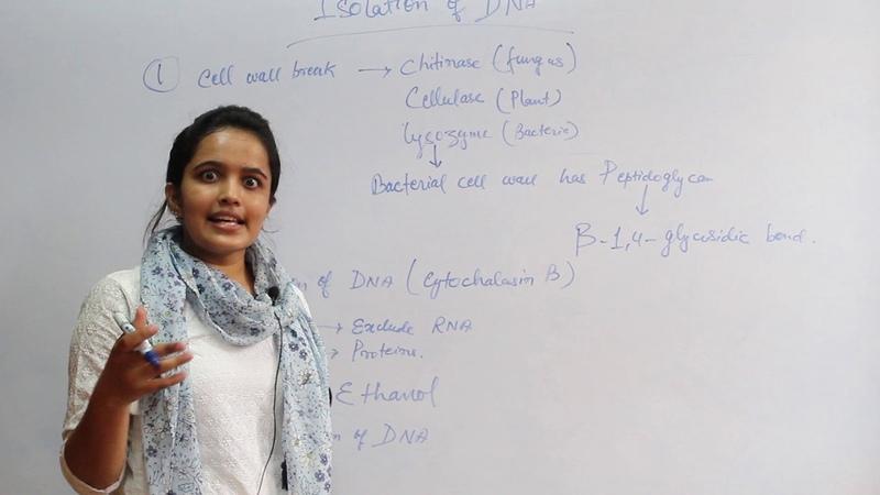 Biotechnology ,Principle and Process FOR PMT(NEET)/AIIMS/NURSING PART-2 » Freewka.com - Смотреть онлайн в хорощем качестве