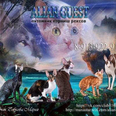 Сухой корм Royal Canin MINI INDOOR ADULT для взрослых
