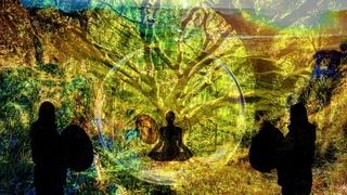 Project For Gaia - Shaman Meditation Drums - Start Of The Rituals